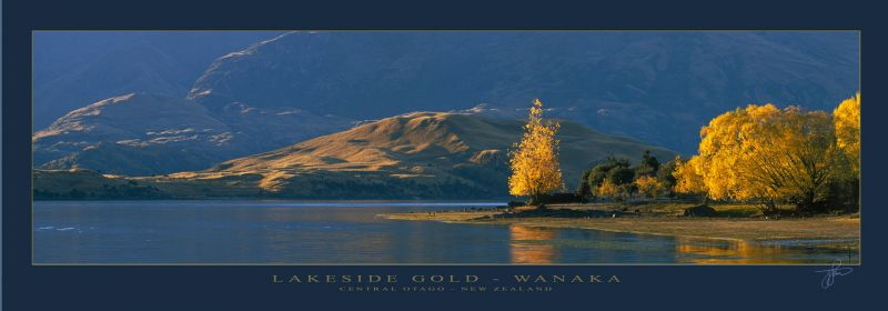 16842 - Lakse Side Gold - Wanaka - Sample Pano