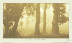 417 - Lambs in the Mist - King Size Landscape