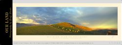 11048c -  Waihao Downs Evening Sample Pano