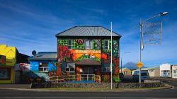 Opunaki Wall Murals H9508