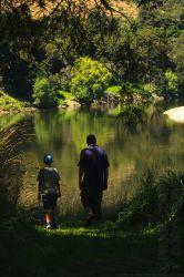 Lower Whanganui River H7698