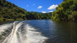 Lower Whanganui River H7704