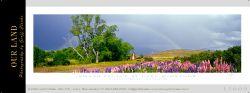 15609 - Smash Palace - Lake McGregor - Sample Pano