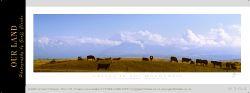 9394 - Cattle in the Mackenzie - Sample Pano