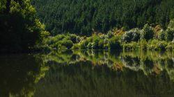 Lower Whanganui River H7609