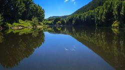 Lower Whanganui River H7638-2